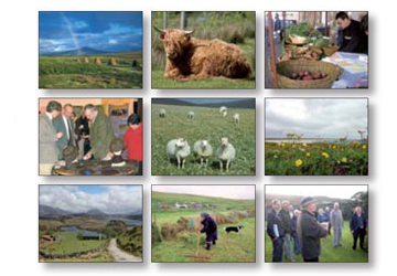 Crofting Resources Programme