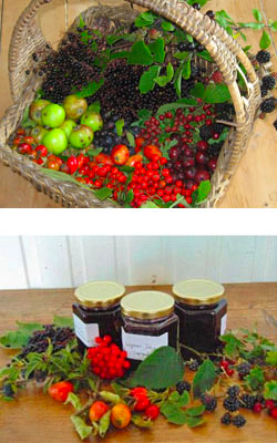 Picture of Hedgerow Jelly Produce