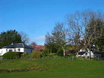 Picture of Oban Seil Cottages