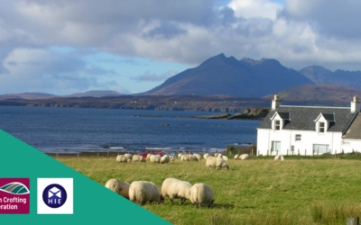 Crofting Resilience in Transition – Sustain, Diversify, Grow