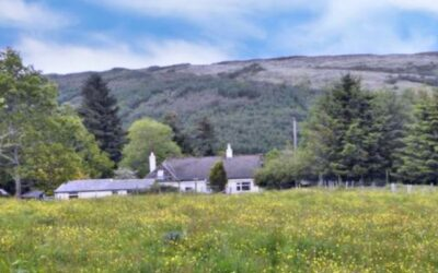 Risk Management in a Social Crofting Context