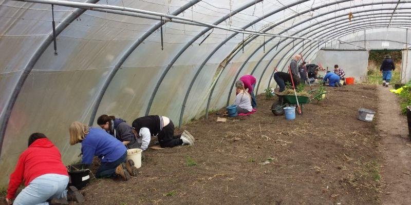 Case Study 1 – Findhorn Bay Care Farm