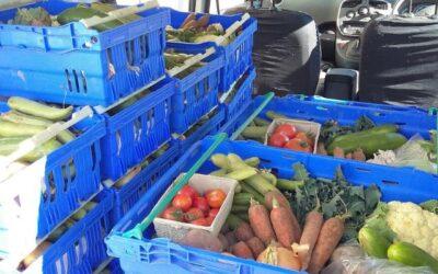 Case Study 4 – Knockfarrel Produce
